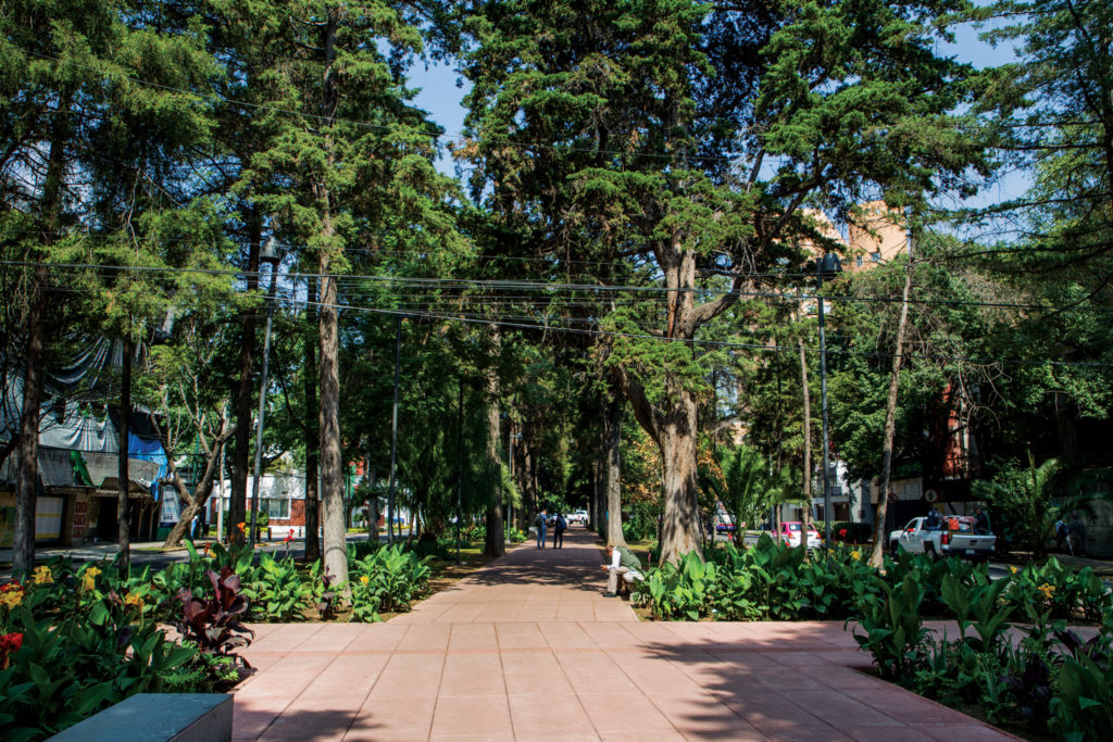 A walk along Avenida Horacio's 2-mile pedestrian median park is loaded with an incredible combination of urban life and lush green spaces